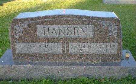 HANSEN, CAROLINE CALLIES - Cerro Gordo County, Iowa | CAROLINE CALLIES HANSEN