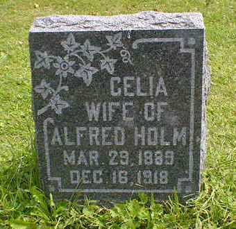 HOLM, CELIA - Cerro Gordo County, Iowa | CELIA HOLM