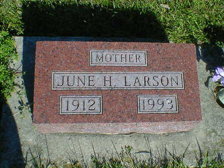 LARSON, JUNE H. - Cerro Gordo County, Iowa | JUNE H. LARSON