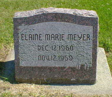 MEYER, ELAINE MARIE - Cerro Gordo County, Iowa | ELAINE MARIE MEYER