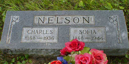 NELSON, CHARLES - Cerro Gordo County, Iowa | CHARLES NELSON