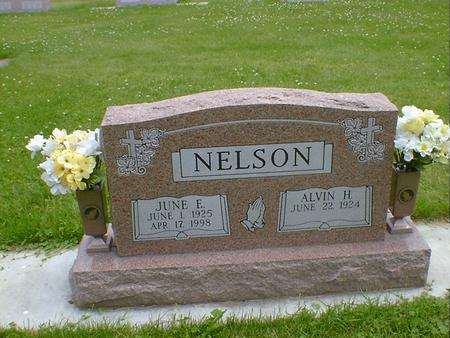 NELSON, JUNE E. - Cerro Gordo County, Iowa | JUNE E. NELSON