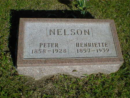 NELSON, PETER - Cerro Gordo County, Iowa | PETER NELSON