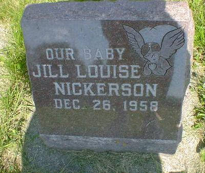 NICKERSON, JILL LOUISE - Cerro Gordo County, Iowa | JILL LOUISE NICKERSON