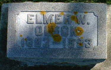 OLSON, ELMER W. - Cerro Gordo County, Iowa | ELMER W. OLSON