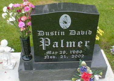 PALMER, DUSTIN DAVID - Cerro Gordo County, Iowa | DUSTIN DAVID PALMER