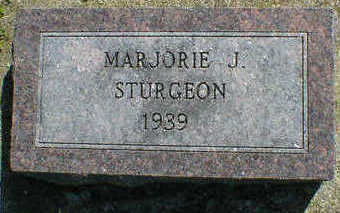 STURGEON, MARJORIE J. - Cerro Gordo County, Iowa | MARJORIE J. STURGEON