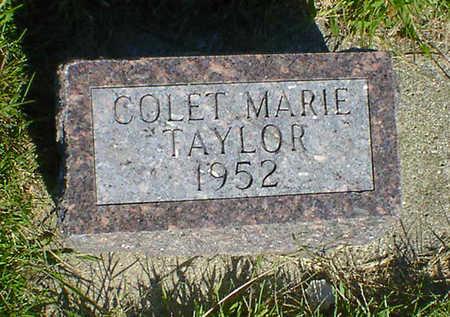 TAYLOR, COLET MARIE - Cerro Gordo County, Iowa | COLET MARIE TAYLOR