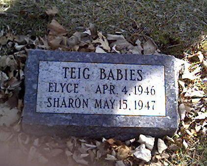 TEIG, ELYCE - Cerro Gordo County, Iowa | ELYCE TEIG