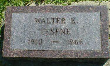 TESENE, WALTER K. - Cerro Gordo County, Iowa | WALTER K. TESENE