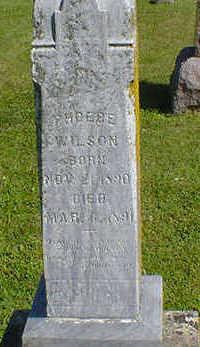 WILSON, PHOEBE - Cerro Gordo County, Iowa | PHOEBE WILSON