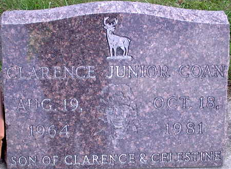COAN, CLARENCE JUNIOR - Chickasaw County, Iowa | CLARENCE JUNIOR COAN