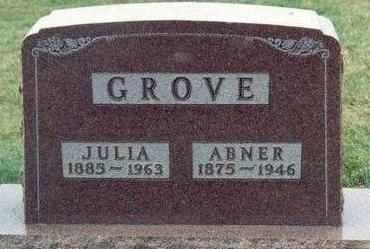GROVE, ABNER - Chickasaw County, Iowa | ABNER GROVE
