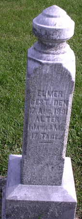 TONN, ELMER - Chickasaw County, Iowa | ELMER TONN
