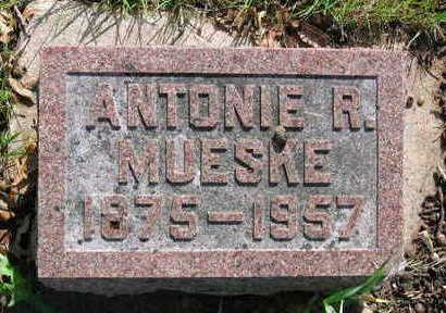 MUESKE, ANTONIE ROSALINDA - Chickasaw County, Iowa | ANTONIE ROSALINDA MUESKE