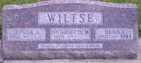 WILTSE, DEAN L. - Chickasaw County, Iowa | DEAN L. WILTSE
