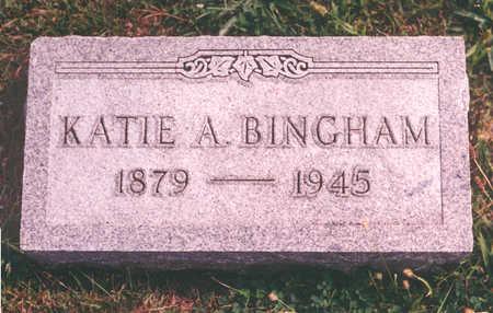 SCHOLL BINGHAM, KATIE - Clarke County, Iowa | KATIE SCHOLL BINGHAM