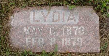 LARKINS, LYDIA - Clarke County, Iowa | LYDIA LARKINS