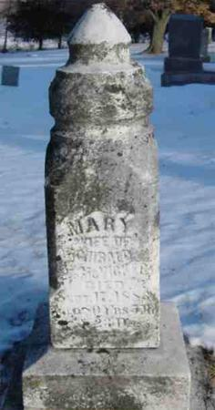 MCVICKER, MARY - Clarke County, Iowa | MARY MCVICKER