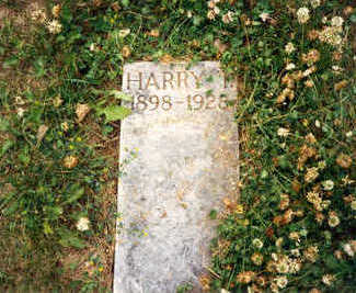 DRISCOLL, HARRY T - Clayton County, Iowa | HARRY T DRISCOLL