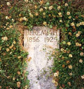 DRISCOLL, JEREMIAH S - Clayton County, Iowa   JEREMIAH S DRISCOLL