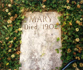 MURPHY DRISCOLL, MARY - Clayton County, Iowa | MARY MURPHY DRISCOLL