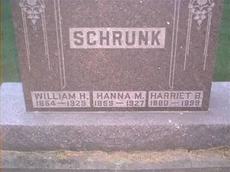 SCHRUNK, WILLIAM H. HANNA M. & HARRIET B. - Clayton County, Iowa | WILLIAM H. HANNA M. & HARRIET B. SCHRUNK