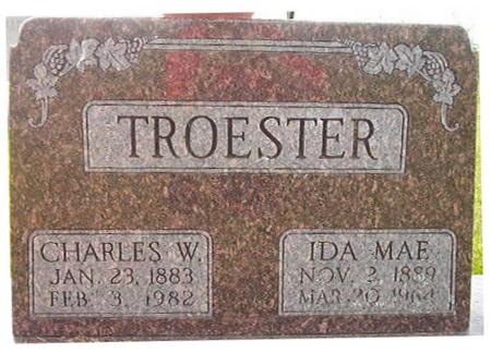 TROESTER, CHARLES W. - Clayton County, Iowa | CHARLES W. TROESTER