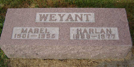 WEYANT, MABEL - Clayton County, Iowa | MABEL WEYANT