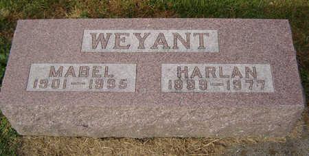 WEYANT, HARLAN - Clayton County, Iowa | HARLAN WEYANT