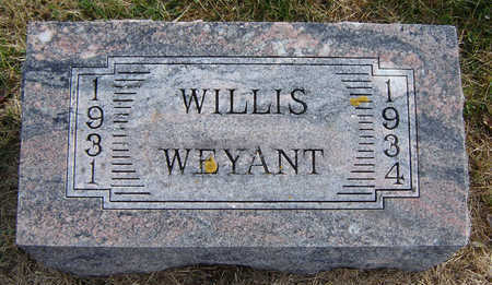 WEYANT, WILLIS - Clayton County, Iowa | WILLIS WEYANT