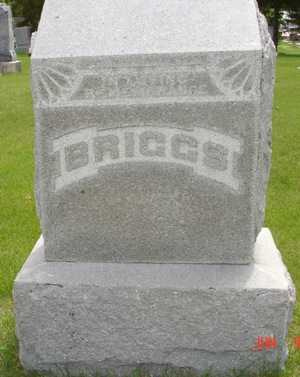 BRIGGS, EDWIN C. FAMILY - Clinton County, Iowa | EDWIN C. FAMILY BRIGGS