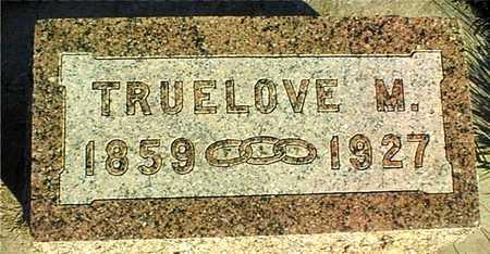 CORSON, TRUELOVE M. - Clinton County, Iowa | TRUELOVE M. CORSON