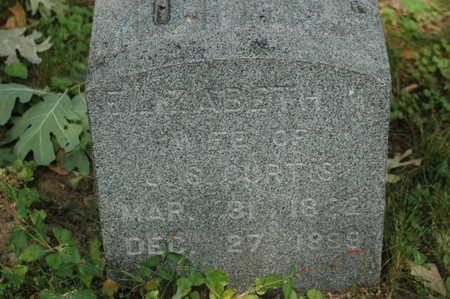 CARPENTER CURTIS, ELIZABETH MARY - Clinton County, Iowa | ELIZABETH MARY CARPENTER CURTIS