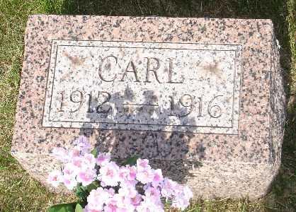 GOODELL, CARL - Clinton County, Iowa   CARL GOODELL