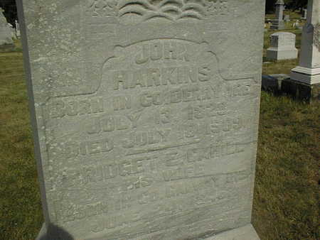 HARKINS, JOHN - Clinton County, Iowa | JOHN HARKINS