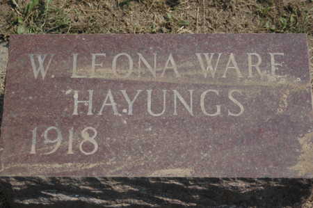 HAYUNGS, W.LEONA - Clinton County, Iowa | W.LEONA HAYUNGS