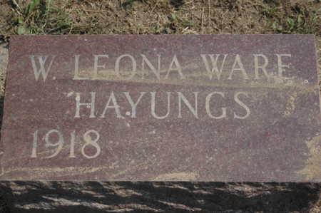WARE HAYUNGS, W.LEONA - Clinton County, Iowa | W.LEONA WARE HAYUNGS