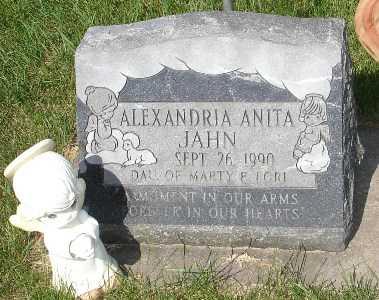 JAHN, ALEXANDRIA ANITA - Clinton County, Iowa | ALEXANDRIA ANITA JAHN