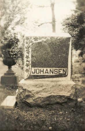 JOHANSEN, JOHAN - Clinton County, Iowa | JOHAN JOHANSEN