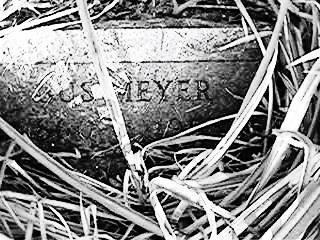 MEYER, GUS - Clinton County, Iowa   GUS MEYER