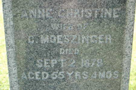 MOESZINGER, ANNA CHRISTINE - Clinton County, Iowa | ANNA CHRISTINE MOESZINGER