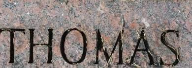 MORRISSEY, THOMAS - Clinton County, Iowa   THOMAS MORRISSEY