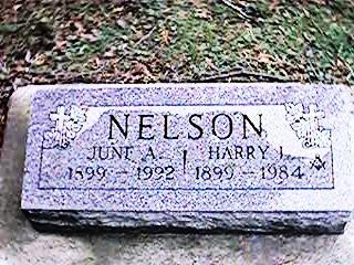 NELSON, HARRY J. - Clinton County, Iowa | HARRY J. NELSON