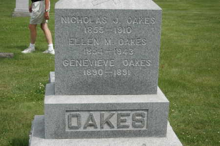 OAKES, ELLEN M. - Clinton County, Iowa | ELLEN M. OAKES