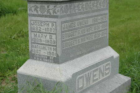 OWENS, MARY B. - Clinton County, Iowa | MARY B. OWENS