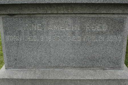 REED, ANNE AMELIA - Clinton County, Iowa | ANNE AMELIA REED