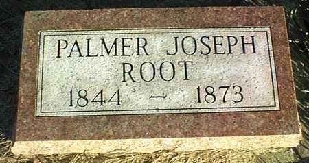 ROOT, PALMER JOSEPH - Clinton County, Iowa | PALMER JOSEPH ROOT