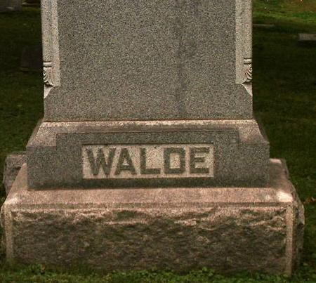 WALDE, FAMILY - Clinton County, Iowa | FAMILY WALDE
