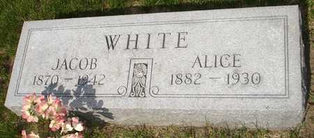 WHITE, ALICE - Clinton County, Iowa | ALICE WHITE